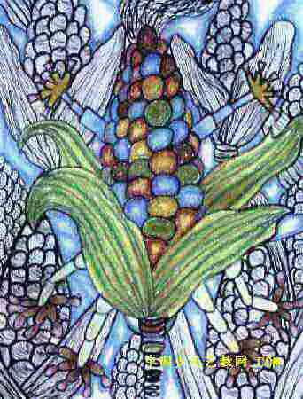儿童画 玉米
