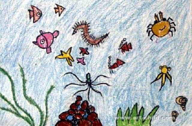 海洋世界儿童画9幅(第8张)