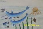 大沙鱼儿童画