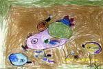 小鸡找虫儿童画2幅