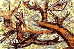 林间小鸟儿童画作品欣赏