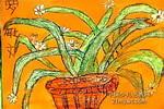 我家的水仙花儿童画