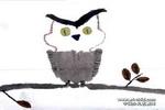猫头鹰儿童画(四)4幅
