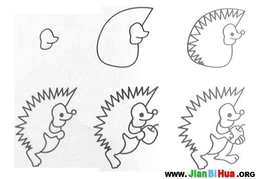 动物毛驴手绘插画