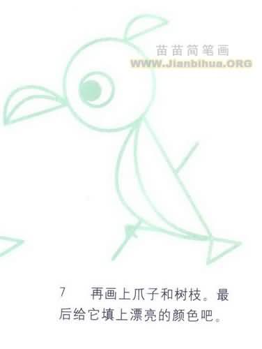 鹦鹉简笔画图片