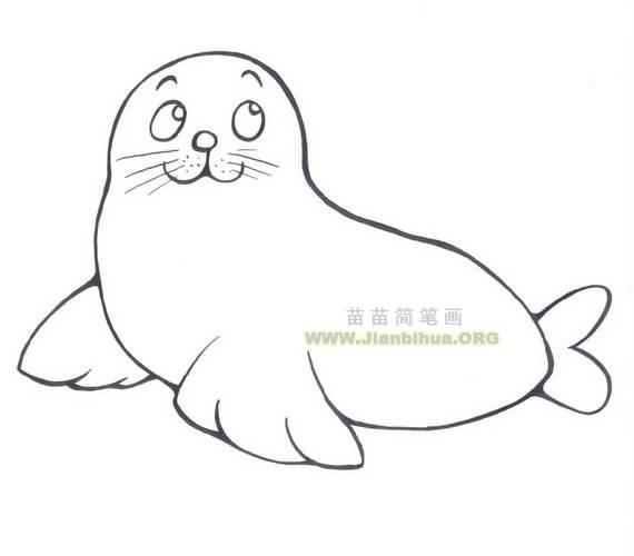 海狮简笔画图片作品三 海狮(学名:Otarriinae):性情温和,多集群活动,陆岸可组成上千头的大群,海上多为1头或十数头的小群。视觉较差,但听觉和嗅觉灵敏。食物主要为底栖鱼类和头足类。雌兽每胎仅产1仔,幼仔出生时体长约100厘米,体重约20千克,3-5岁时达到性成熟,寿命可达20年以上。