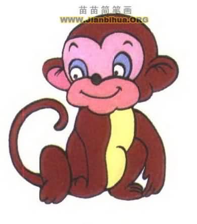 猴子简笔画图片大全-玫瑰花简笔画图片大全