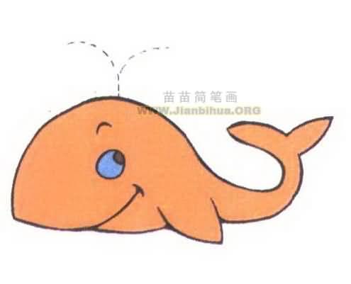 形状像鱼,鲸往往被俗称为鲸鱼,但实际上鲸并不是一种鱼.海豚
