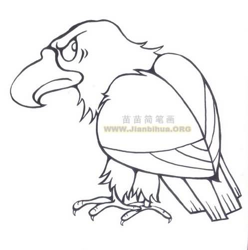 老鹰简笔画图片