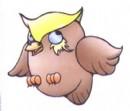 卡通猫头鹰简笔画图片大全