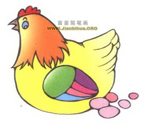 母鸡生蛋简笔画图片3张图片