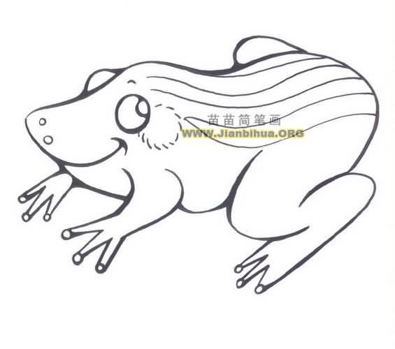 卡通小青蛙简笔画图片大全