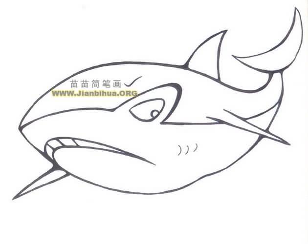 大鲨鱼简笔画图片大全