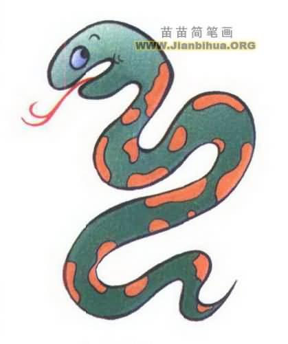 蛇是无足的爬行动物的总称,属于爬行纲有鳞目蛇亚目的总称.