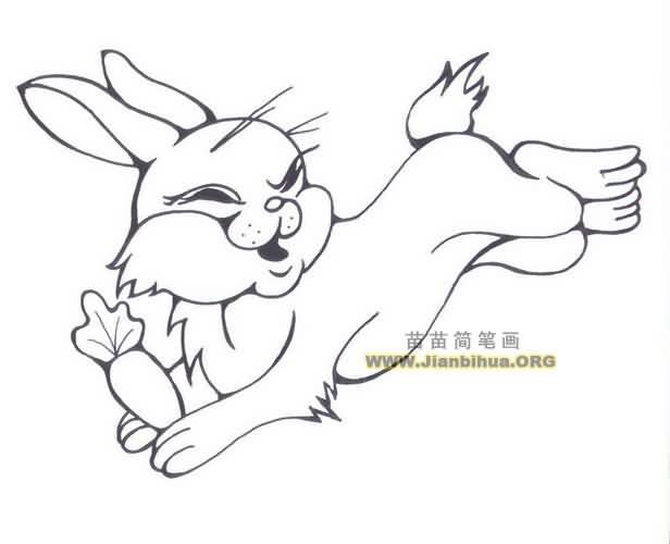 跳跃的兔子简笔画图片大全