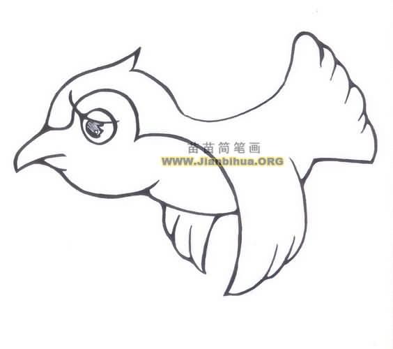 小鸟简笔画_可爱小鸟简笔画_简笔画动物-圈子花园图片