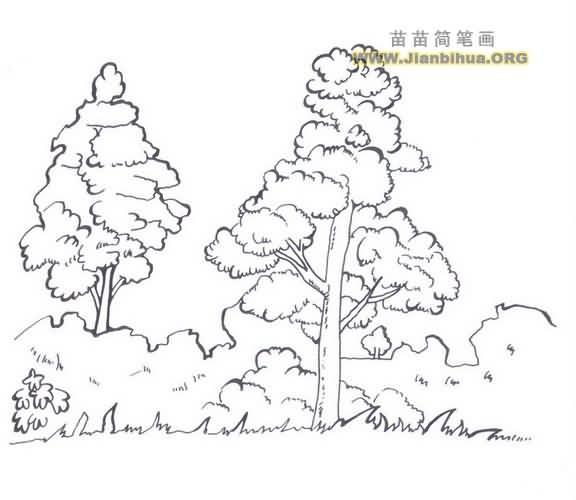 树林简笔画图片