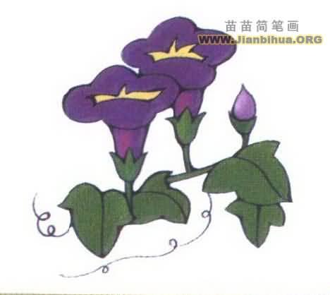 植物种子简笔画图片