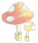 小蘑菇简笔画图片教程