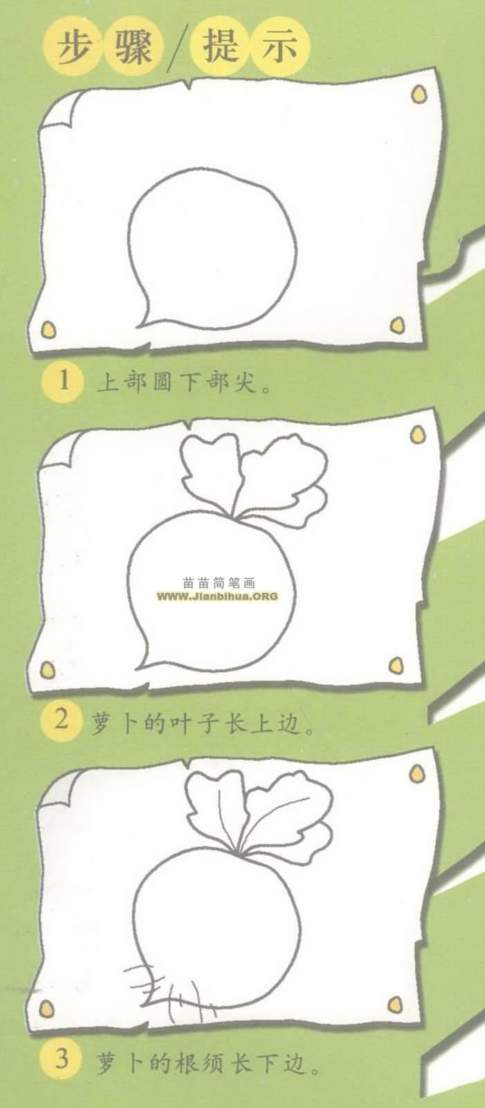 水萝卜简笔画图片教程