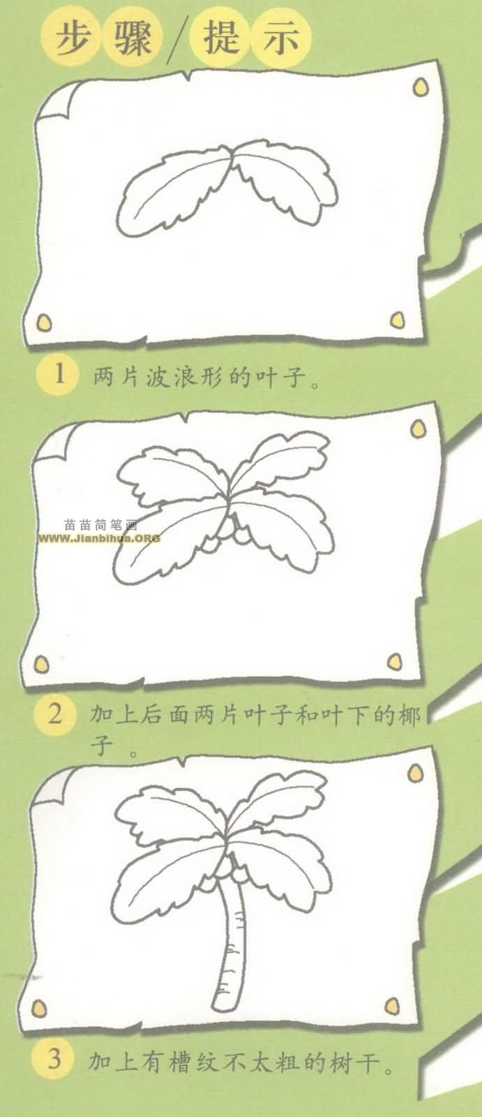 椰子树简笔画图片教程