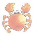 螃蟹简笔画图片教程二