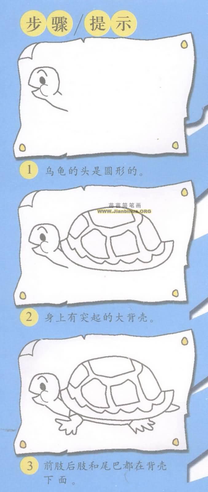 乌龟简笔画