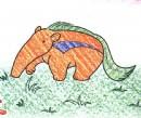 食蚁兽简笔画图片教程