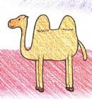 如何画骆驼简笔画图片教程