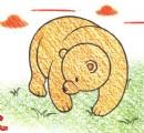 熊的简笔画图片教程