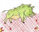 野猪简笔画图片教程