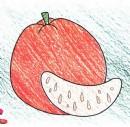 橘子简笔画图片教程