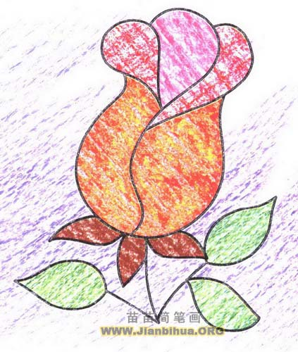 玫瑰简笔画图片教程