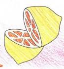 柠檬简笔画图片教程