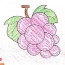 葡萄简笔画图解