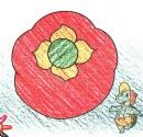 如何画柿子简笔画图片教程