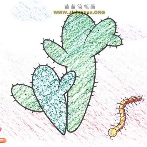 仙人掌简笔画画法图解图片