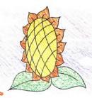 向日葵简笔画画法图解