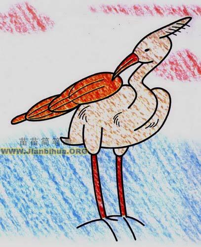 简笔画白鹭景象小学生内容|简笔画白鹭景象小学生版面设计