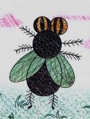 苍蝇简笔画图片教程