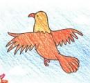 如何画鸽子简笔画图片教程