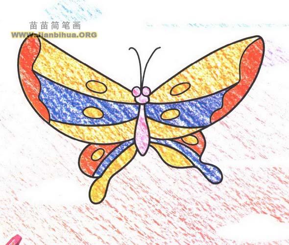 画蝴蝶的简笔画画法