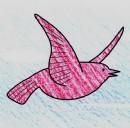 小鸟简笔画画法图解