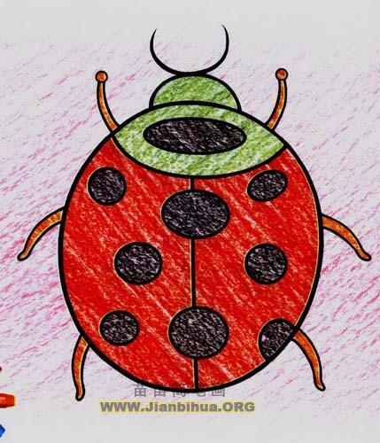 小瓢虫简笔画,儿童卡通简笔画大全,怎么画卡通小瓢虫图画,儿童画