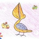 鹈鹕简笔画画法图解