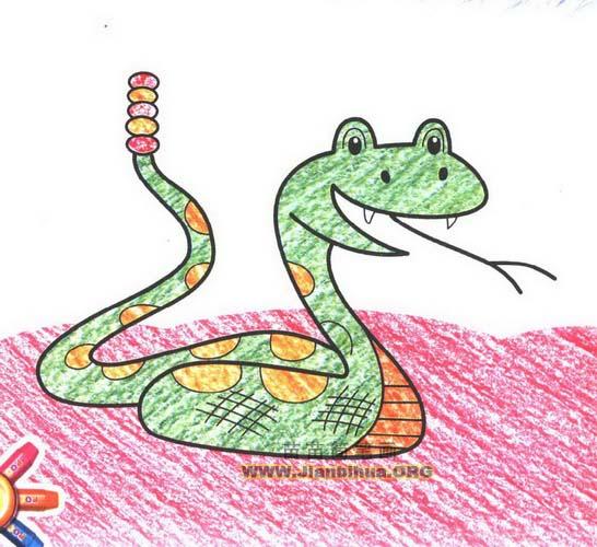 响尾蛇简笔画图片