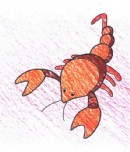 蝎子简笔画图片教程