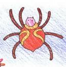 蜘蛛简笔画图片教程