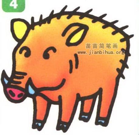 野猪卡通简笔画画法图解