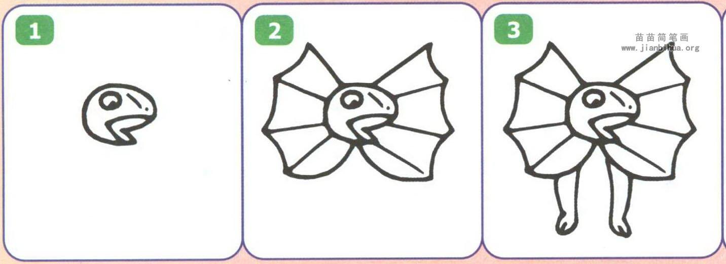 摺鳃蜥简笔画